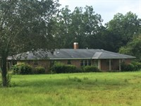 382 Acres With A 3 Bedroom Home : Banks : Pike County : Alabama