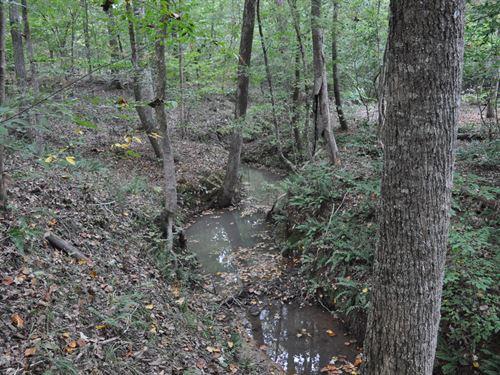 Oak Grove Tract : Tignall : Wilkes County : Georgia