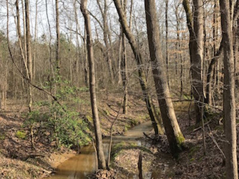 94.17 Acres Great Hunting Property : McKenzie : Henry County : Tennessee