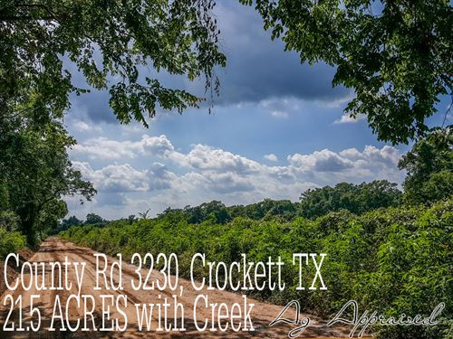 21.58 Acres In Houston County : Crockett : Houston County : Texas