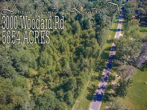56.54 Acres In Hardin County : Kountze : Hardin County : Texas