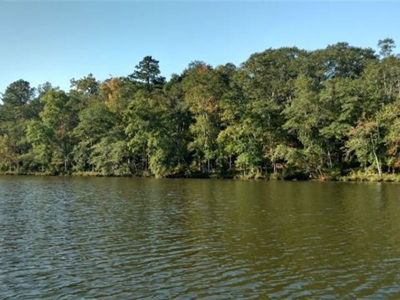 Lake sinclair mature timber ranch for sale for Lake sinclair fishing