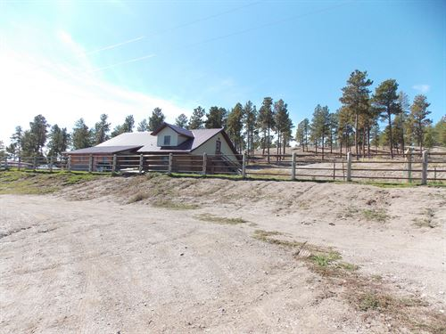 44+Acres W/3 Sides Adjoining Fs : Upton : Crook County : Wyoming