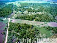 12.01 Acres In Navarro County : Powell : Navarro County : Texas