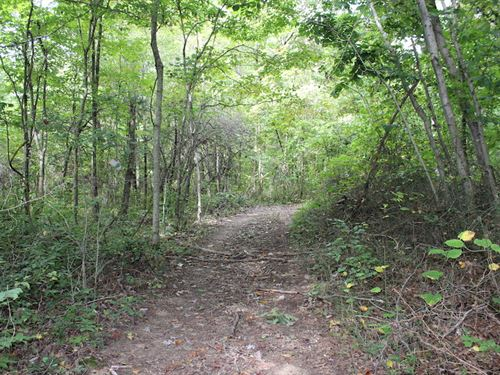 Sr 683 - 84 Acres : McArthur : Vinton County : Ohio