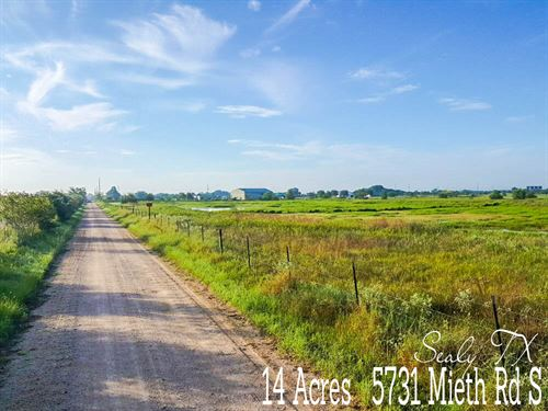 14 Acres In Austin County : Sealy : Austin County : Texas