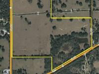 Sumter County Ag Land 100 Ac Sr 50 : Webster : Sumter County : Florida