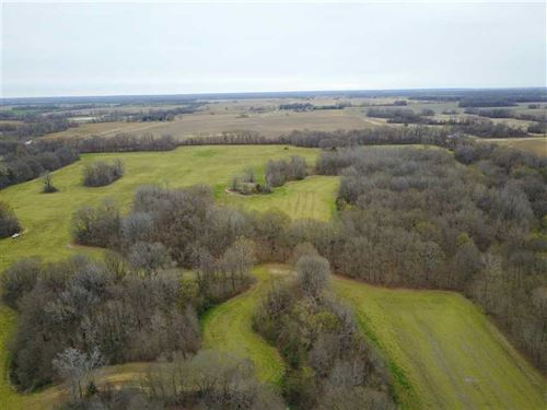 155 Acre Farm And Timber Property : Marvell : Phillips County : Arkansas