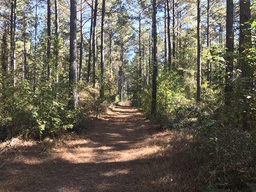 147 Acres of Timberland With De : Monticello : Drew County : Arkansas