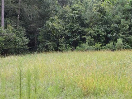 84 Acres Timber And Hunting Land : D'lo : Simpson County : Mississippi
