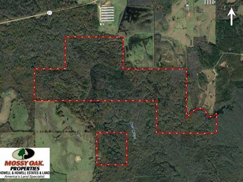 Big Price Reduction - 375 Acre : Philadelphia : Neshoba County : Mississippi