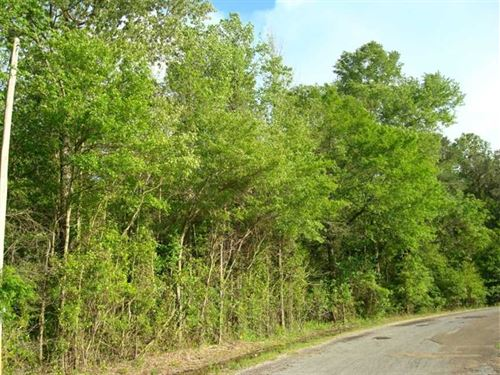 10.01 Acres, Tract 36, Mini-Fa : Brandon : Rankin County : Mississippi