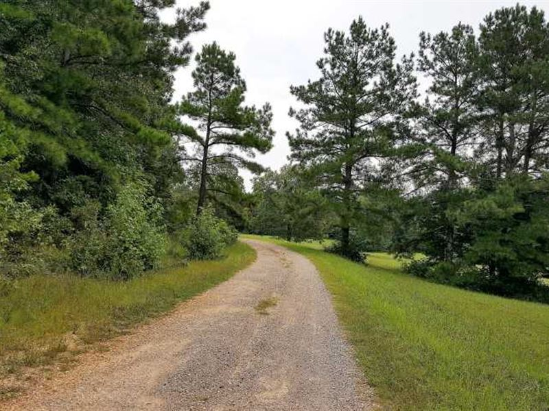 Reduced $100,000, Motivated Sell : Adamsville : McNairy County : Tennessee