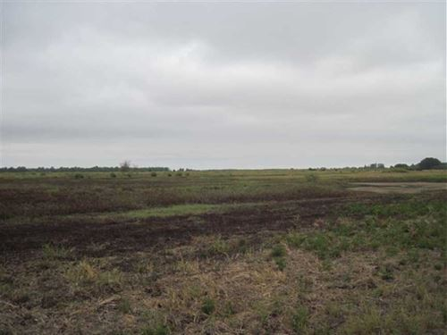 Recreational Land For Sale 340 Ac : Greenwood : Leflore County : Mississippi