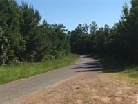 Land 275 Acres For Sale in Grena : Grenada : Grenada County : Mississippi