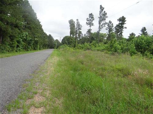 Roy Tract, Bienville Parish, 28 Ac : Castor : Bienville Parish : Louisiana