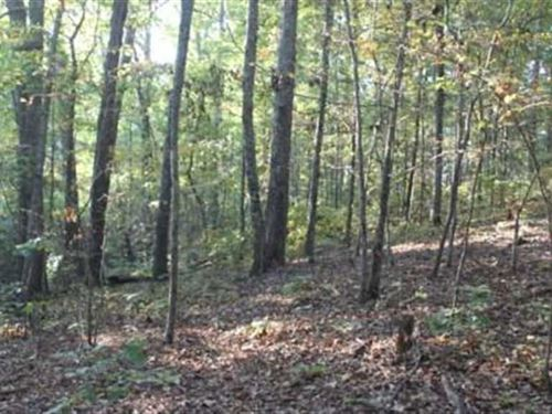 18 Acres Located in Marion Cou : Winfield : Marion County : Alabama