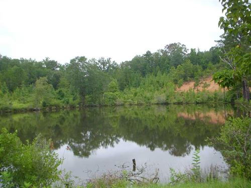 157 Acre Tract Loaded With Timber : Comer : Barbour County : Alabama