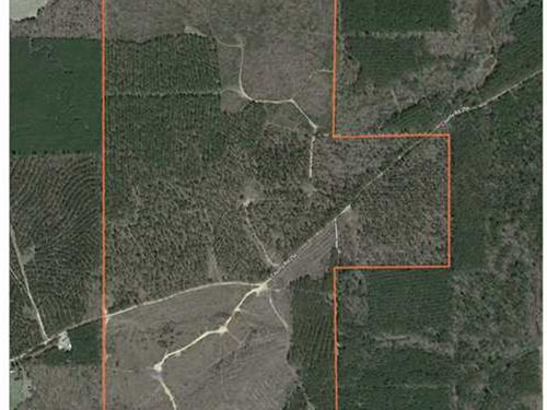 444.30 Acres on CR 254 in Hous : Houston : Chickasaw County : Mississippi