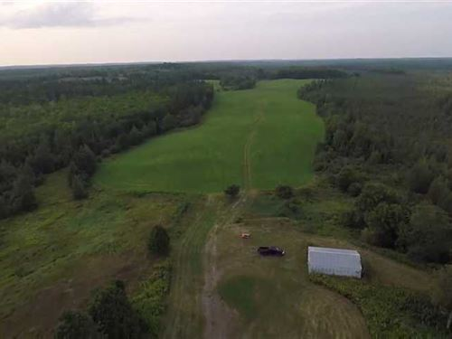 268 Acres of Prime Managed Norther : Butternut : Ashland County : Wisconsin