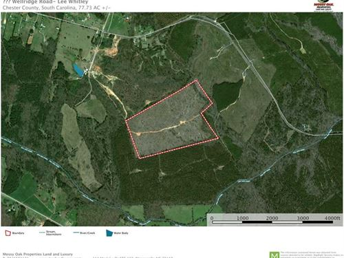 76 Ac, Wellridge Road, Chester SC : Chester : South Carolina