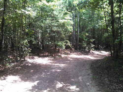 30 Ac Wooded in Granite Falls Mor : Granite Falls : Caldwell County : North Carolina