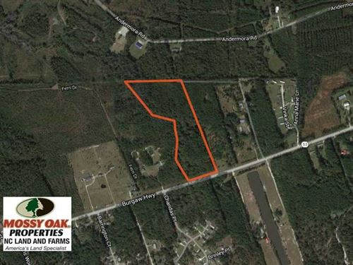 Reduced, 16.38 Acres of Timber an : Maple Hill : Onslow County : North Carolina