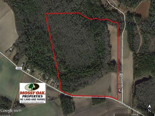 Land For Sale in Columbus County : Whiteville : Columbus County : North Carolina