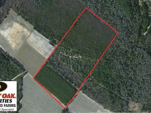 Under Contract, 39.7 Acres of Hun : Evergreen : Columbus County : North Carolina