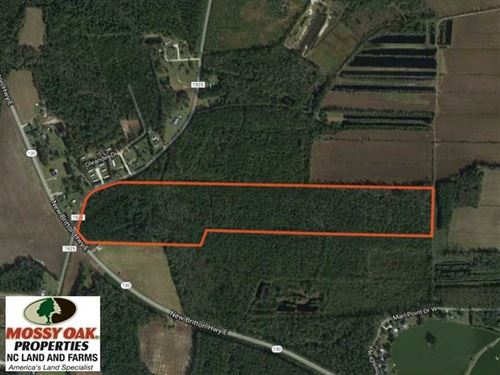 Under Contract, 57 Acres of Timbe : Whiteville : Columbus County : North Carolina