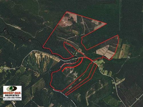 833.54 Acres of Hunting And Timber : Burgaw : Pender County : North Carolina
