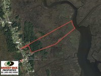 41 Acres of River Front Hunting LA : Beaufort : Carteret County : North Carolina