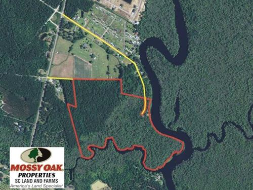 Under Contract, 65 Acres of Hunti : Conway : Horry County : South Carolina