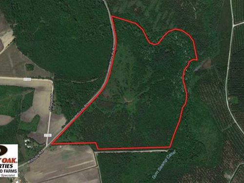 Reduced, 123 Acres of Hunting Lan : Lumberton : Robeson County : North Carolina