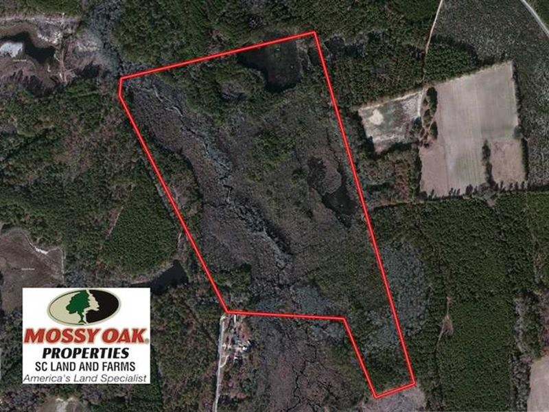 Under Contract 99 Acres Of Hunti Ranch For Sale Bennettsville