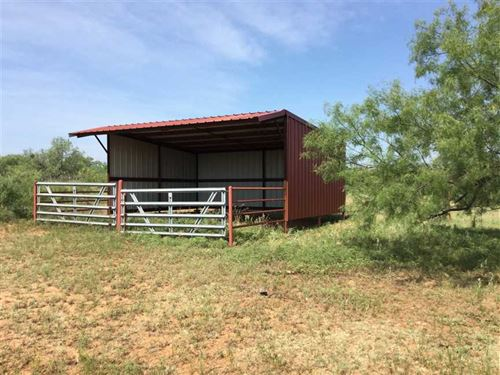 268.42 Acres in SE Mitchell County : Robert Lee : Mitchell County : Texas
