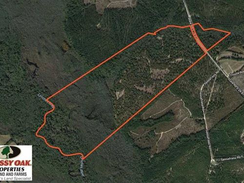 210 Acres of Riverfront Hunting an : Bethune : Kershaw County : South Carolina