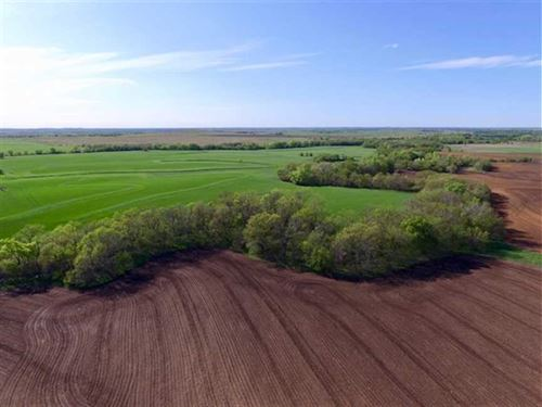 Priced to Sell, $1,700 Per Ac. 300 : Roxbury : McPherson County : Kansas