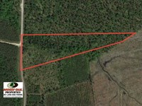 Reduced, 10 Acres of Residential : Edenton : Chowan County : North Carolina