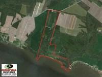 Reduced, 151 Acres of Waterfront : Hertford : Perquimans County : North Carolina