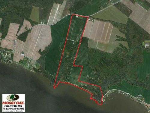 Reduced, 151 Acres of Waterfront : Hertford : Perquimans County : North Carolina