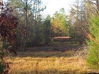 Price Drop, Honey Hole Recreat : Fort Towson : Choctaw County : Oklahoma