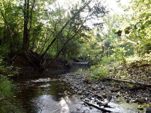 Recreational Whitetail Hunting Pro : Albion : Pushmataha County : Oklahoma