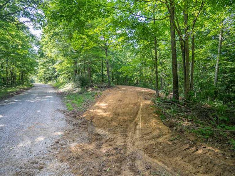 Tick Ridge Rd - 50 Acres - Athens : Amesville : Athens County : Ohio