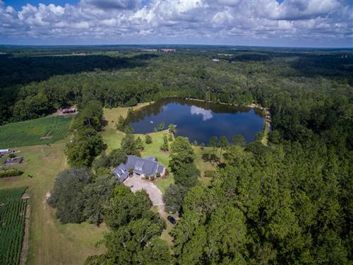 Gentleman's Farm With Luxury Home : Screven : Wayne County : Georgia