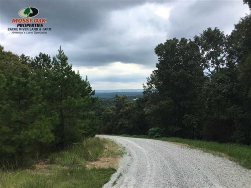 Price Drop, Mountain Top Property : Searcy : White County : Arkansas