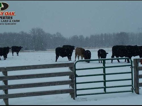 For Sale 90 Acres of Pasture : Beebe : White County : Arkansas