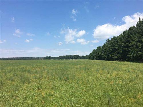 Farmland For Sale, Rice /Beans : Beebe : White County : Arkansas