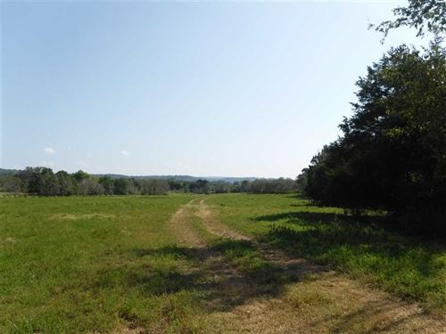 40 Acres of Recreational, Developm : Clarksville : Johnson County : Arkansas