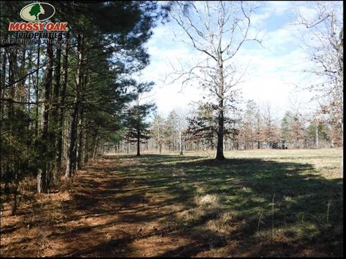 80 Acres of Recreational Timberlan : Cleveland : Van Buren County : Arkansas
